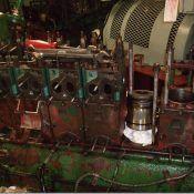 generator d'carb