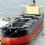 Distinctive Ships of 2010 : Dry Bulk Carrier E.R. Brandenburg