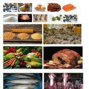 Food Provision