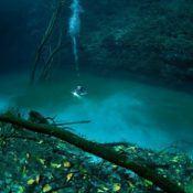 River-under-the-Sea