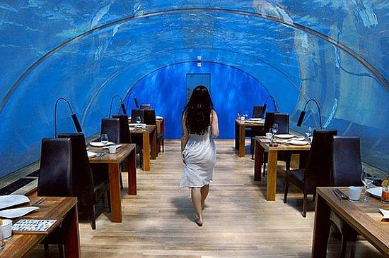 Undersea Hotel Interior by Hilton Maldives Resort Spa Top 6 Awesome Underwater Hotels
