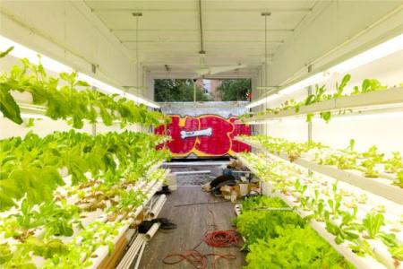 Farm In Container