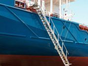 Real Life Accident: Ship's Master Dies After Falling from Gangway