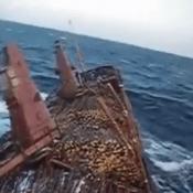log-ship