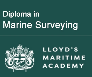 Marine Surveying - Marine Insight - 300x250