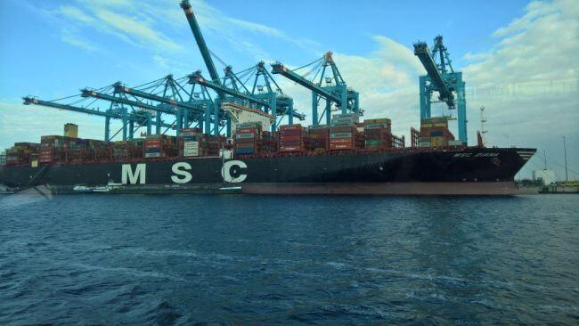 MSC Diana