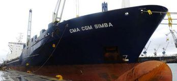 CMACGMSimba-Domingue_Fig01_SimbaVslPhoto