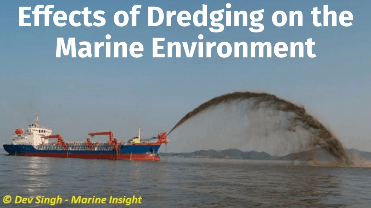 Effects of Dredging on the Marine Environment