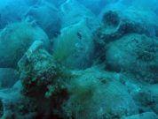 6  Latest Shipwrecks Found Around the World