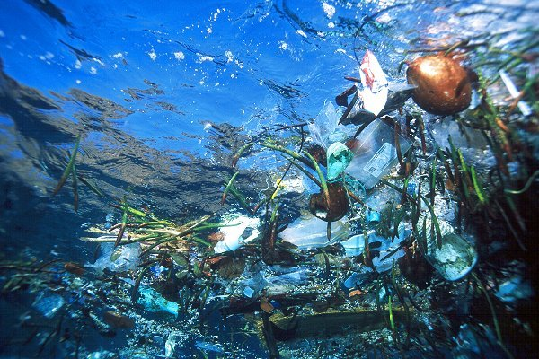 how does plastic affect the ocean