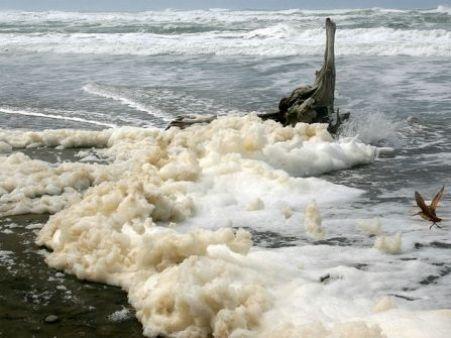 sea-foam