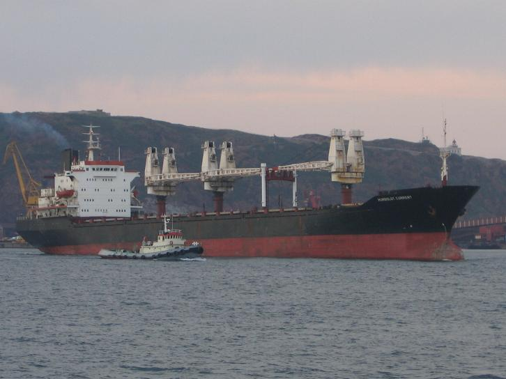 Real Life Accident: Deck Cadet Dies On Bulk Carrier Due to Multiple