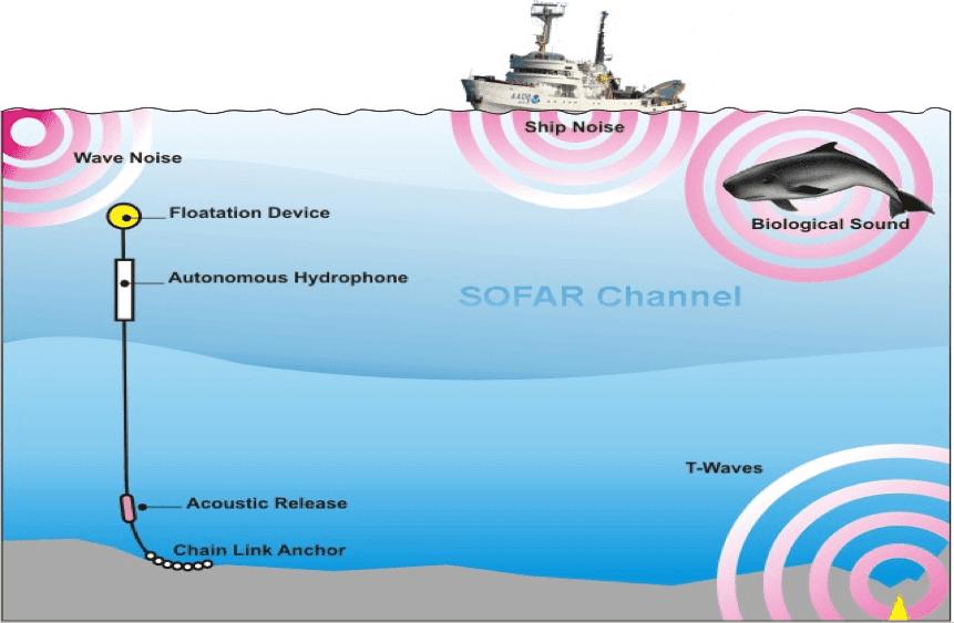 Underwater Hydrophone