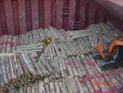Real Life Accident: Four Stevedores Die On Log Vessel