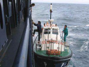 maritime pilot ladder