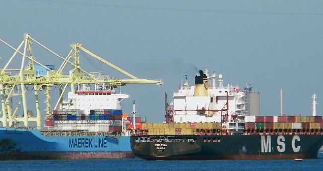 MSC and maersk