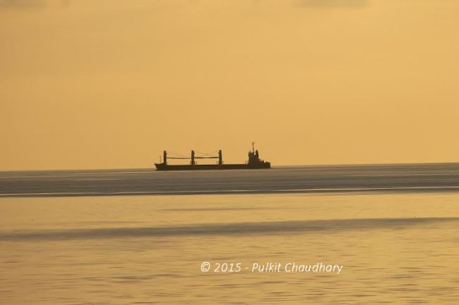 bulk carrier representation
