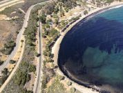 Federal Government Orders Pipeline Company To Clean California Oil Spill
