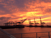 port sunset