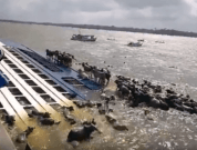 Video: Thousands Of Cattle Presumed Dead In Brazil Boat Accident