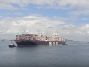 Watch: All The World's Largest Ships In Service