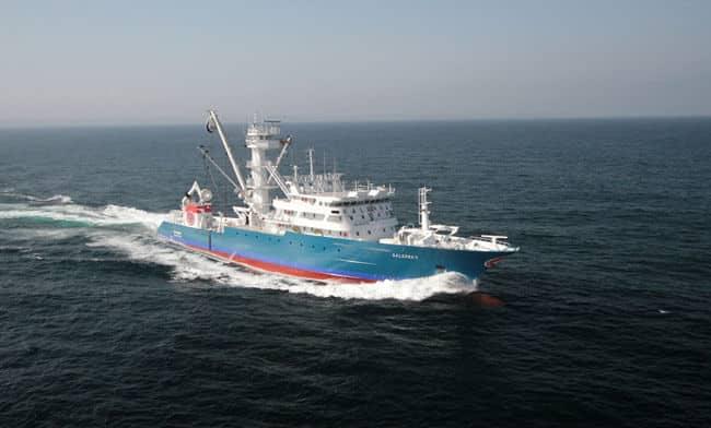 Albacora-Galerna-II-Fishing-vessel (1)