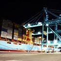 Jaxport's 100Gauge Cranes2