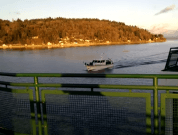Watch: Pleasure Boat Rams Into Passenger Ferry