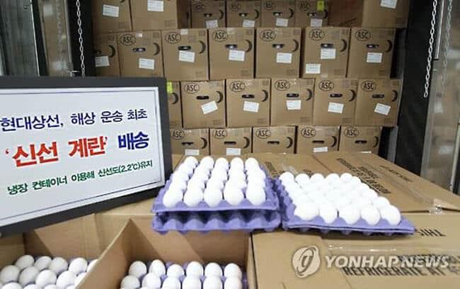 Eggs-Shipped_HyundaiMM