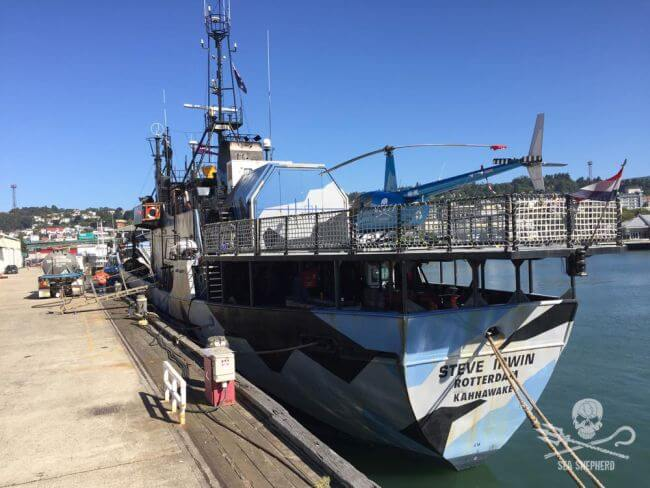 Sea_Shepherd_Steve-Irwin-docked-in-Dunedin