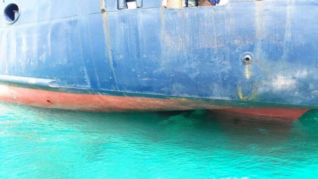 Cruise ship damages Coral Reefs