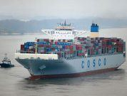 COSCO_Development