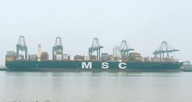MSC Mirjam