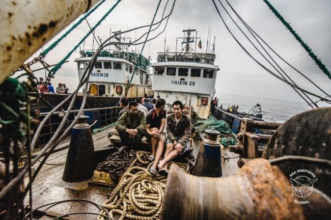 seashepherd_trawler arrest1