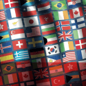 Shipping Industry Flag State Performance Table