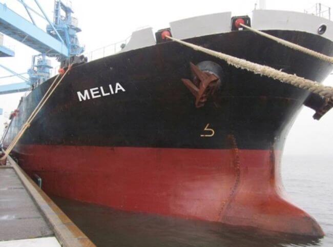 Diana Shipping MV Melia