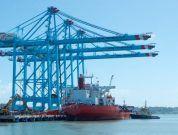 APM Terminals Moin Cranes (1)