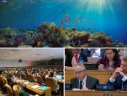 IMO Takes Steps Towards Protecting Oceans And The High Seas