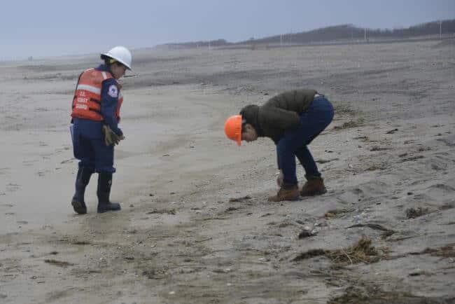 oil spill dublin express_shore assessment