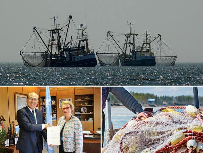 France signs up to fishing vessel training treaty