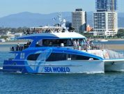 Australia Most Advanced Most Advanced Whale Watching Vessel_spirit of migaloo