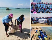 Cleaning up marine litter