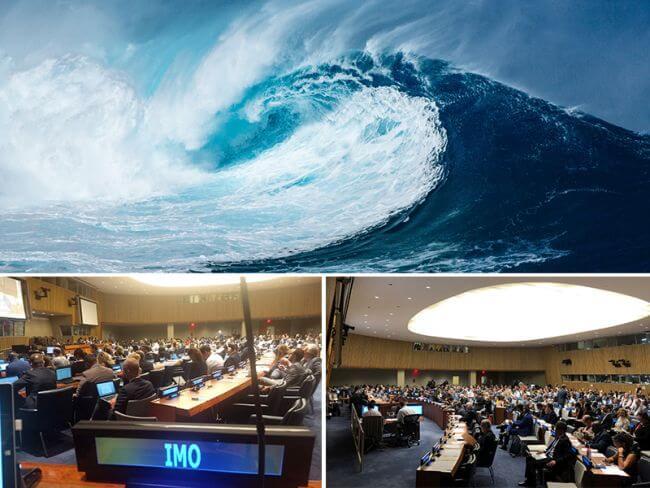 Steps towards new treaty to protect marine biodiversity