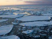 Pancake ice on Arctic Sea Ice