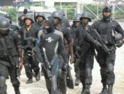 Nigerian Naval Force