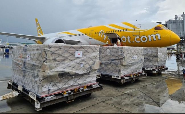 600 units of Oxygenators donated by Temasek Foundation being loaded on the Scoot TR 1390 flight bound for Manila