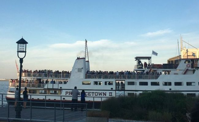 celebrating the covid season in boston harbor
