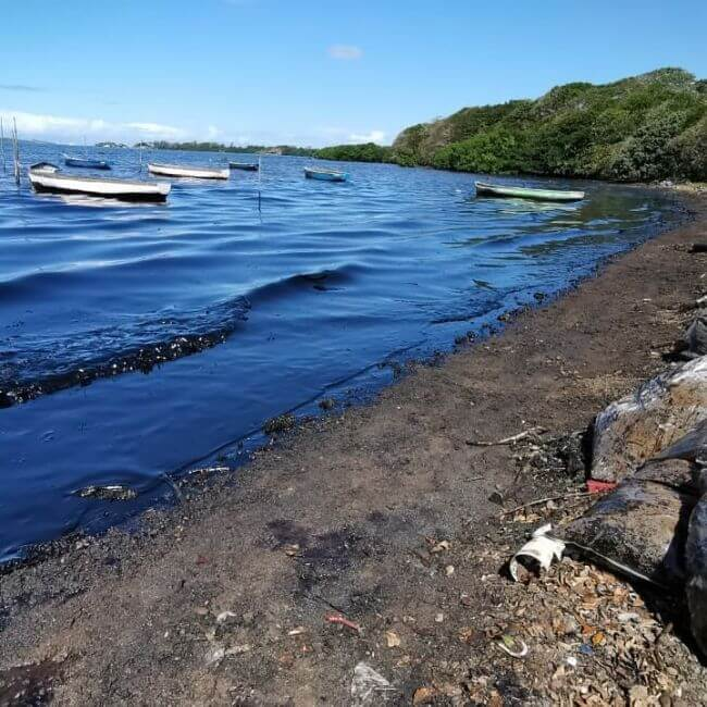 Mauritius Oil Spill _ Japanese Cargo Ship_ sea