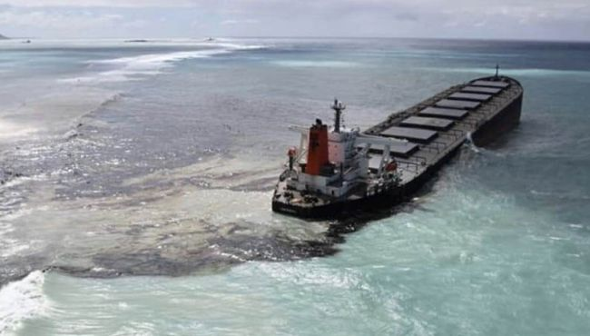 Mauritius Oil Spill back view