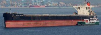 cape size bulker vega dream